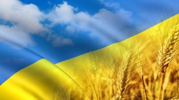 COMFY запустил украинскую версию сайта