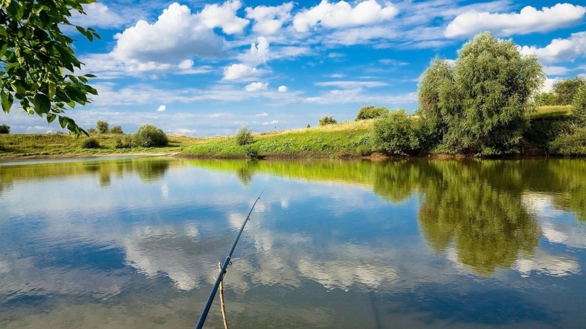 Пикник и рыбалка-фото