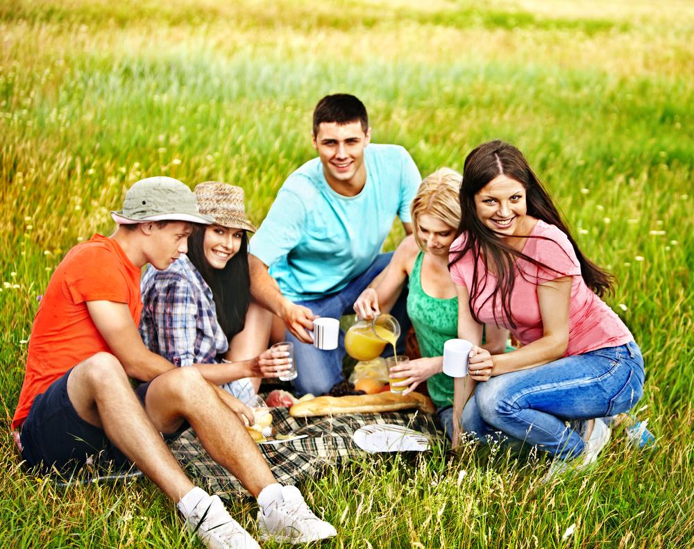 Пикник-компания друзей фото 2