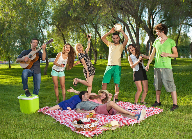 Пикник-компания друзей