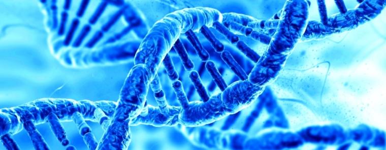 ДНК бактерии уже удалось записать 100 байт