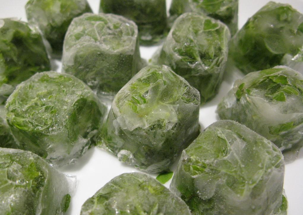 Сохранение зелени-кубики льда