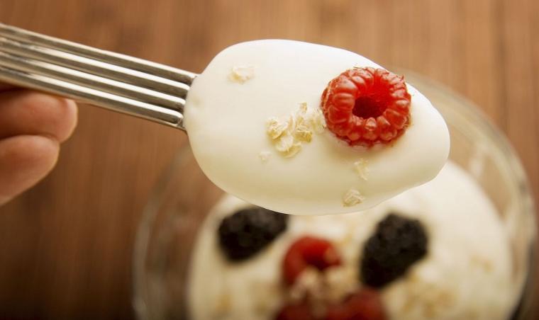 Папка «Фотографии», фото Домашний йогурт-готовый десерт фото 2