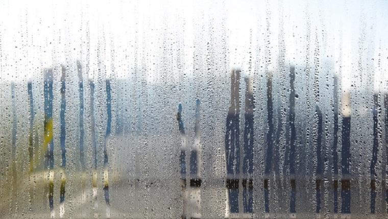 Обыкновенное чудо — пять мифов об увлажнителях воздуха – излишняя влажность