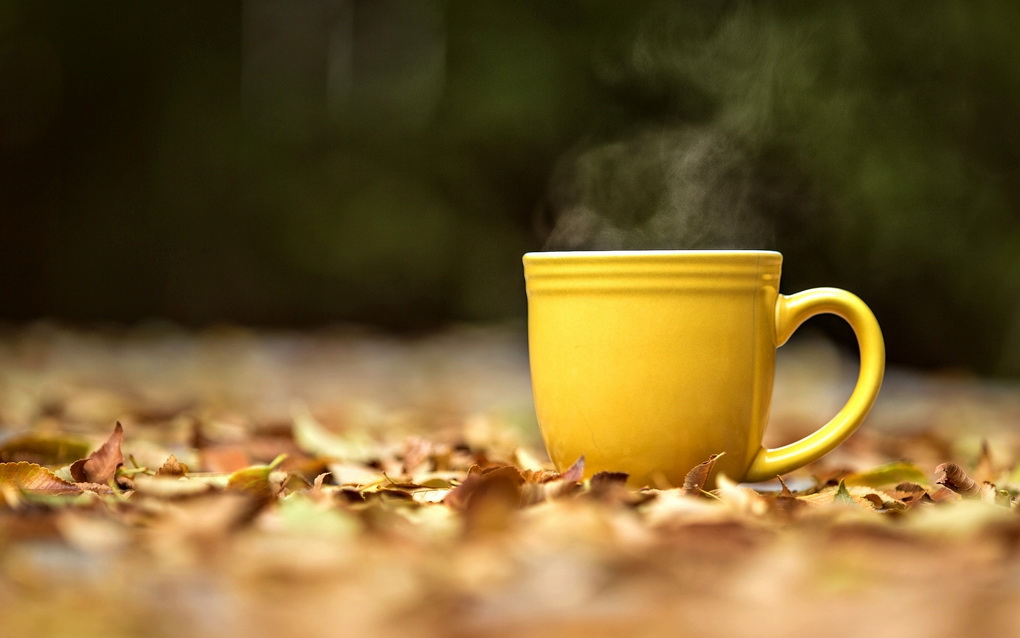 vitaminnyjj-chajj-osen