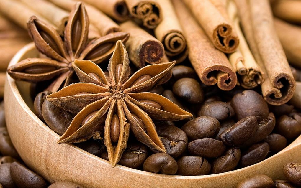 badyan-ingredient-glintvejjna-pryanost