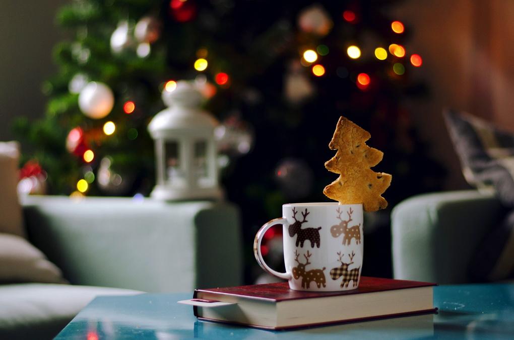 chtenie-tematicheskikh-knig-kak-sozdat-novogodnee-nastroenie
