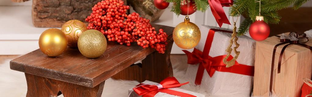 ostrolist-novogodnee-rastenie-v-uehlse