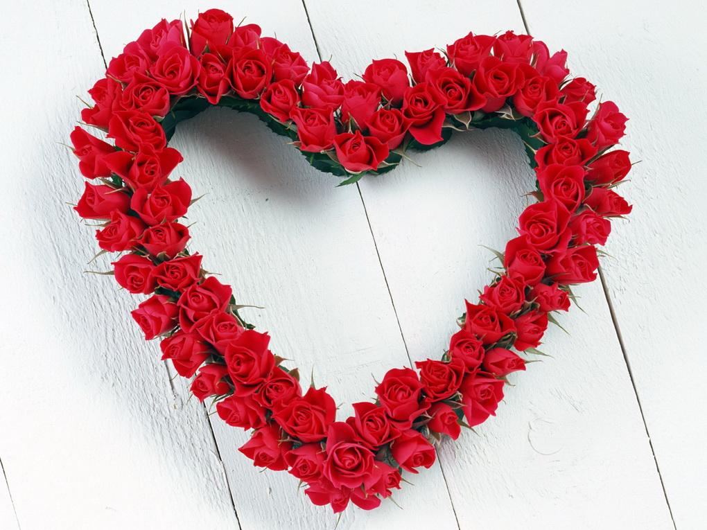 alye-rozy-den-svyatogo-valentina