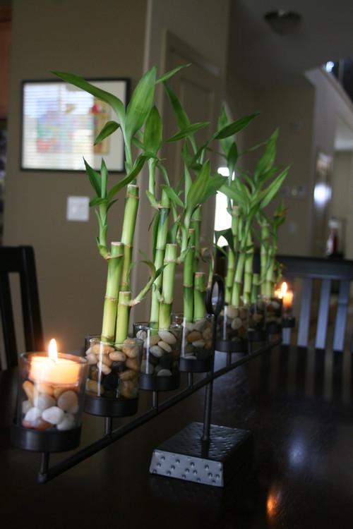 bambuk-kompoziciya