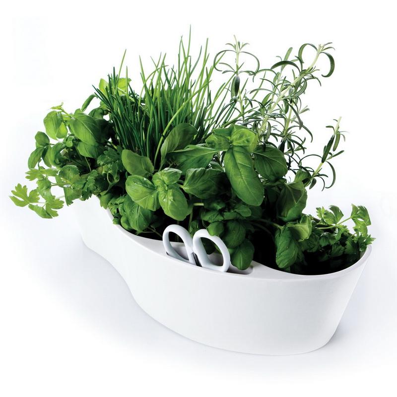 herb-garden-dlya-zdorovogo-pitaniya