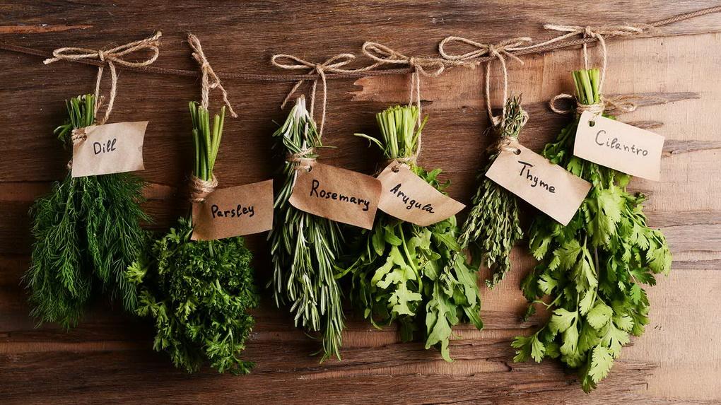 travy-na-podokonnike-puchki-zeleni