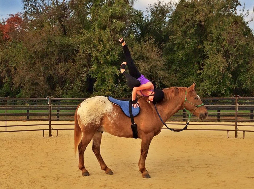Анжела Нуньес-йога на лошади