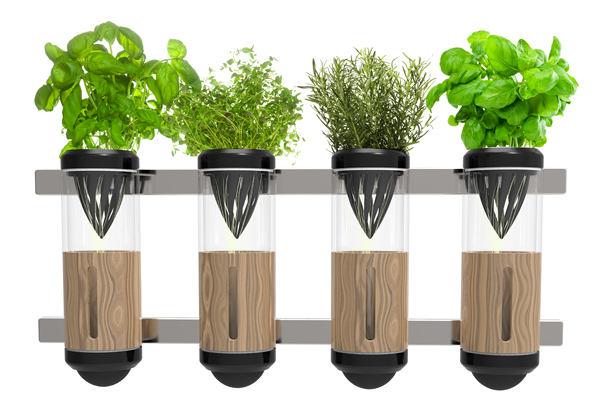 innovacionnye-ustrojjstva-dlya-vyrashhivaniya-zeleni-foto