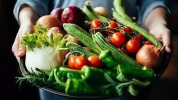 Сезонные продукты летний режим питания