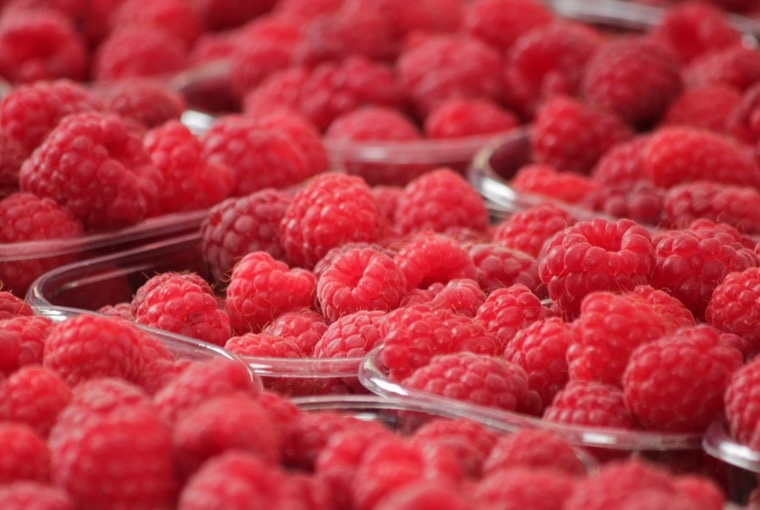 raspberries-fruits-berries-fruit-54271