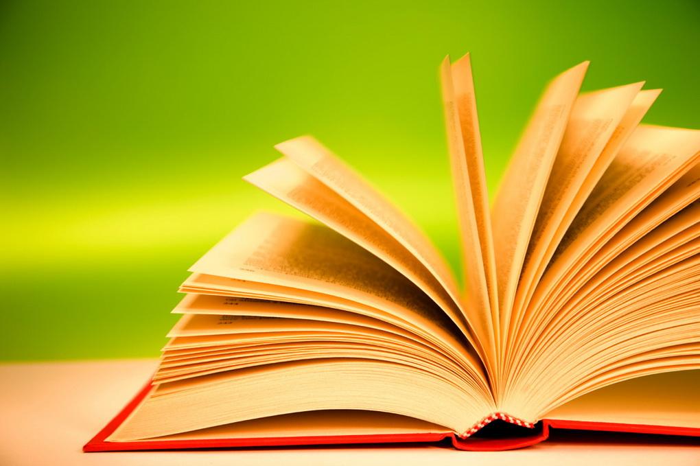 Чтение книг-фото 2
