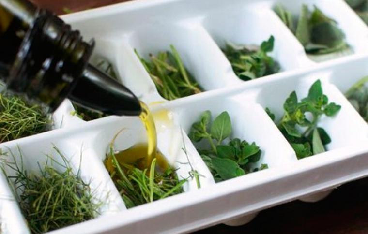 Кубики с зеленью в оливковом масле-правильная заморозка