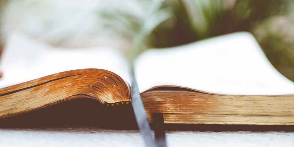 Осознанное чтение-фото