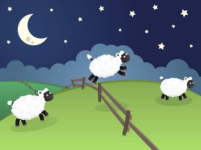 Сон-овцы