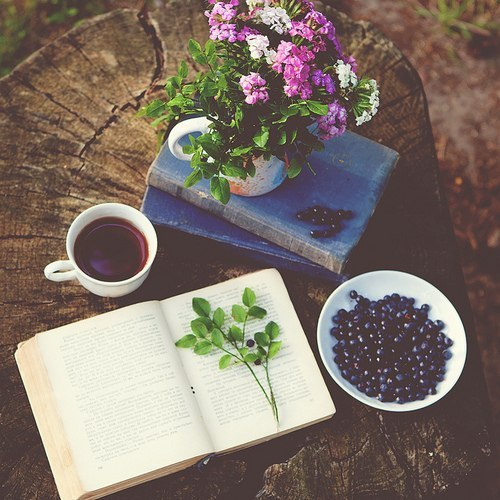 Вкусное чтение в саду-досуг