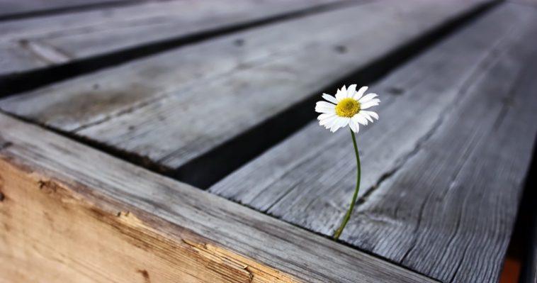8 привычек, которые мешают нам жить лучше
