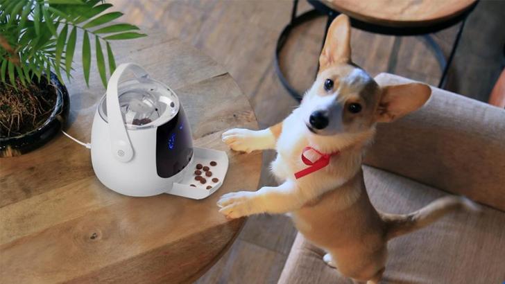 Acer Munch-дозатор еды для животных