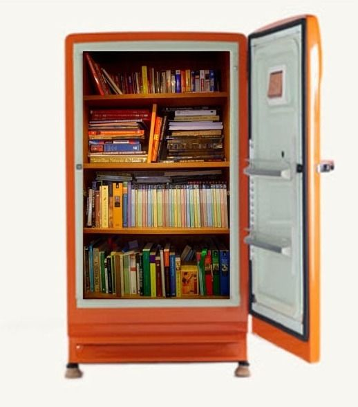 Холодильник-шкаф