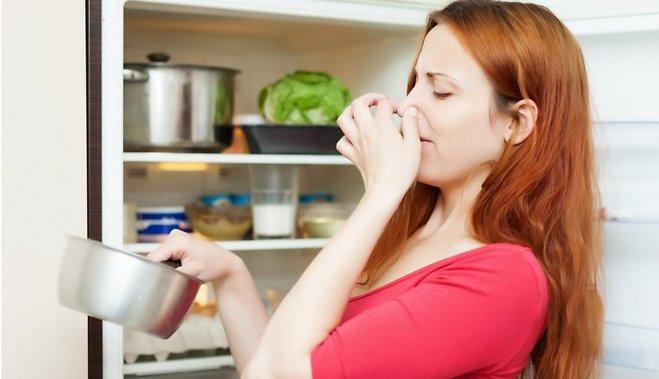 Какая температура должна быть, чтобы продукты не портились - продукты испортились