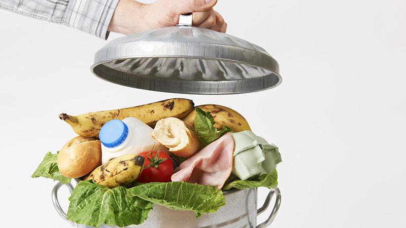 Какая температура должна быть, чтобы продукты не портились - продукты в мусоре