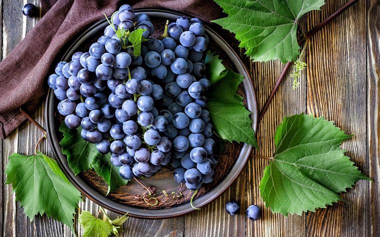 Папка «Фото», Сезонные продукты-осенний режим питания – виноград.