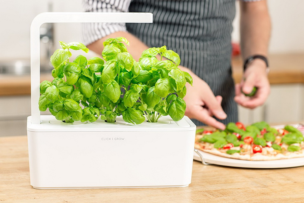 SMART GARDEN-Click and Grow зелень на кухне