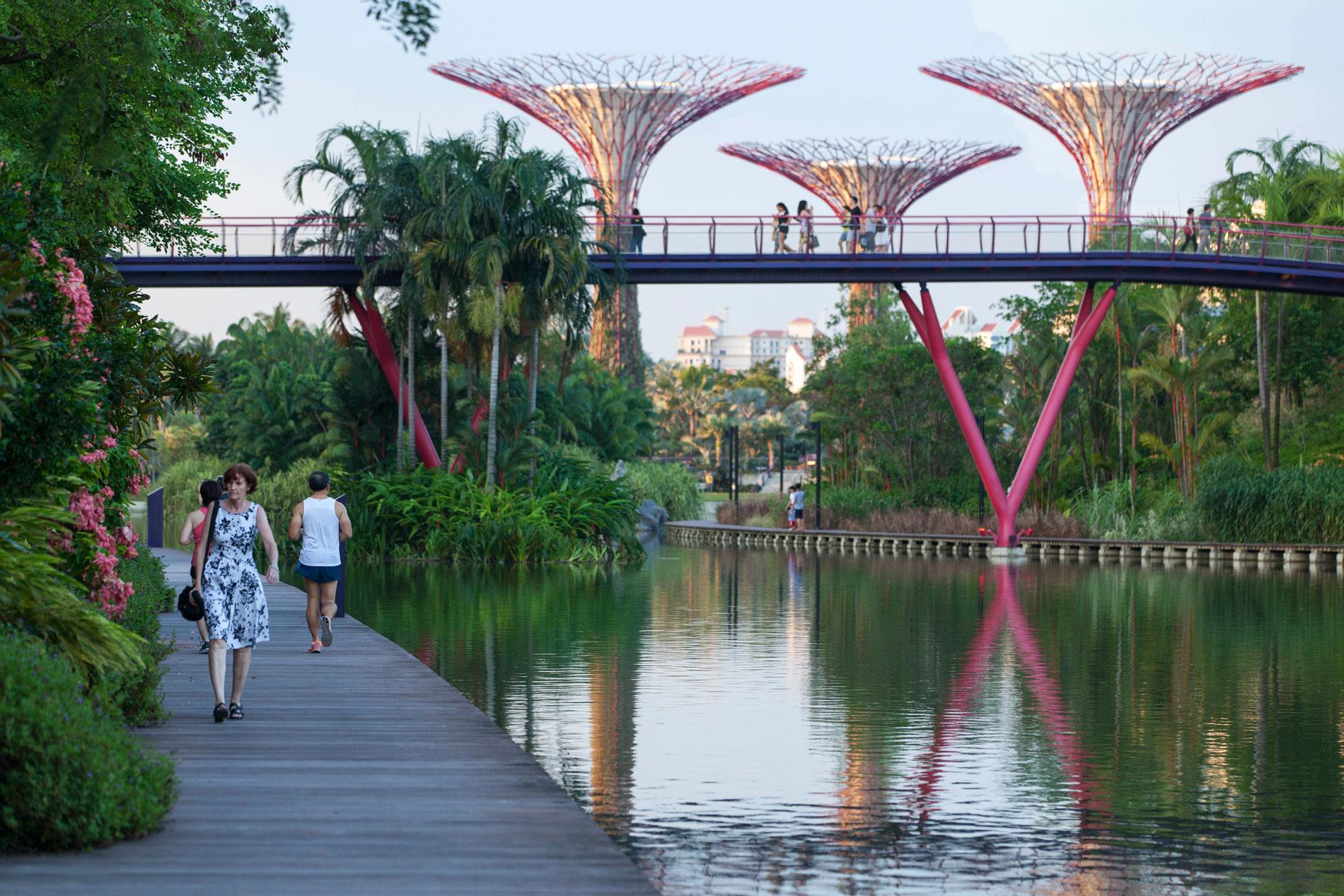 Папка «Фото», Города будущего-реализованные и перспективные проекты – Сингапур.