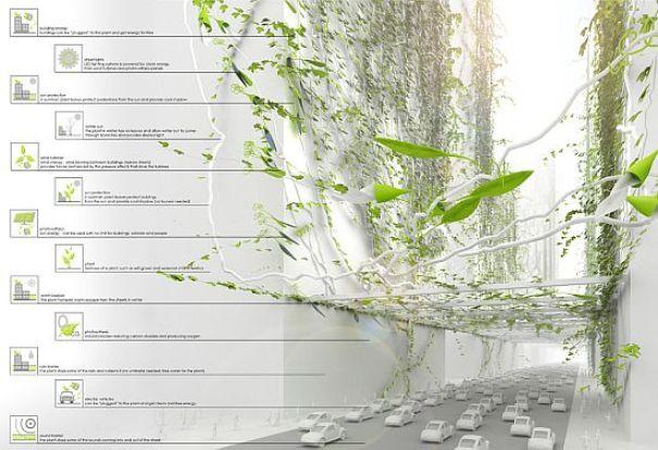 Папка «Фото», Города будущего- реализованные и перспективные проекты – города из лозы.