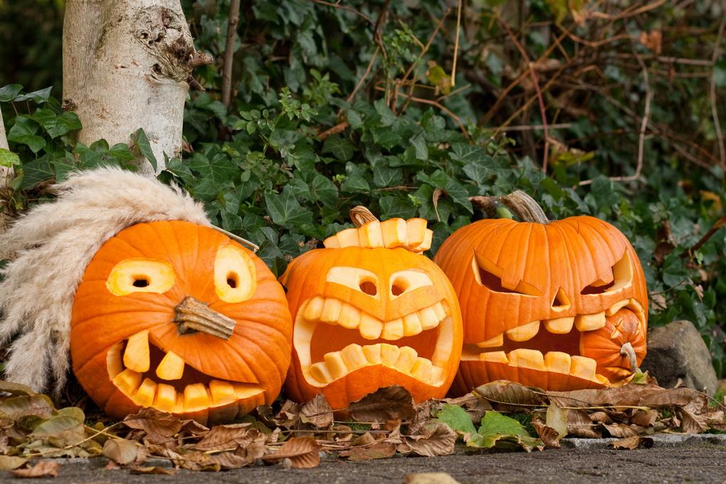Тыквы-Хэллоуин