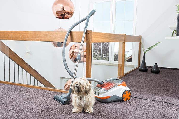 DryBox + AquaBox Cat&Dog в доме