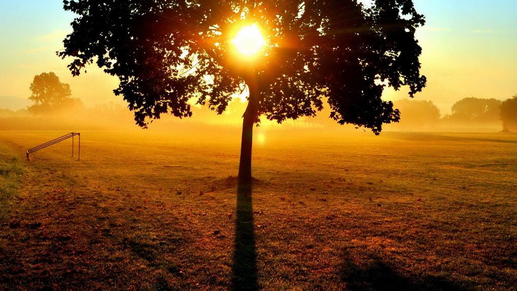 Осеннее солнце-фото
