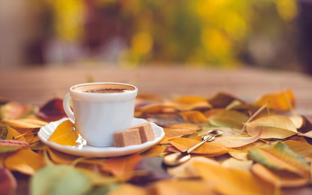 Тихое счастье-чаепитие