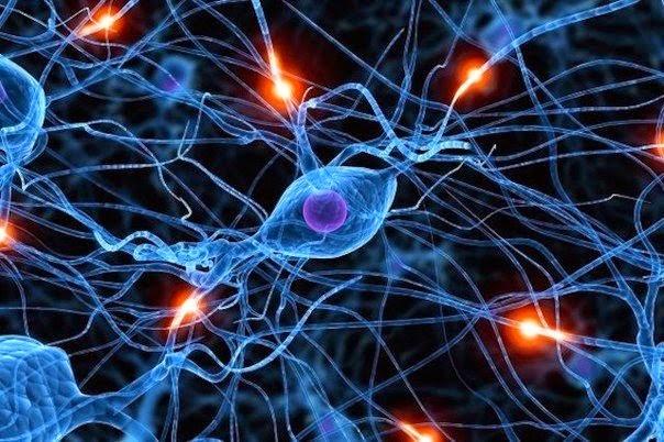 Выброс эндорфинов в организме-процессы