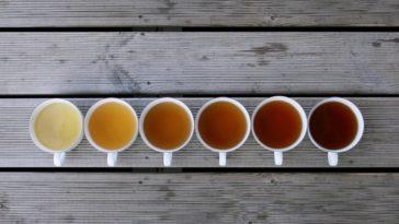 Чашка чая в разных странах мира