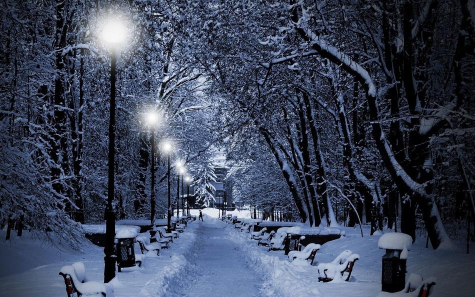 Заснеженный парк-прогулка