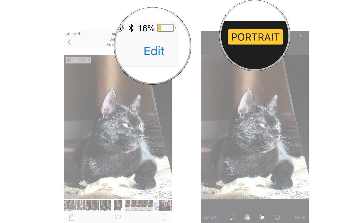 Как использовать портретный режим и портретное освещение в iPhone X - как отключить портретный режим на iOS 11