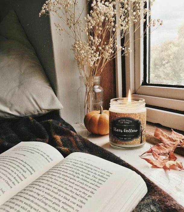 Книга у окна-зимний досуг