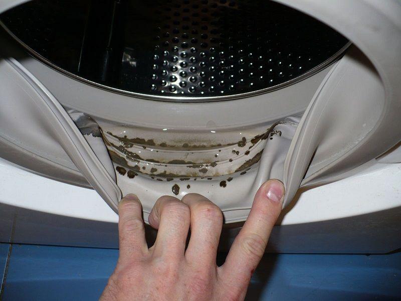 Неприятный запах в стиральной машине_лучшие способы избавления - грязная манжета