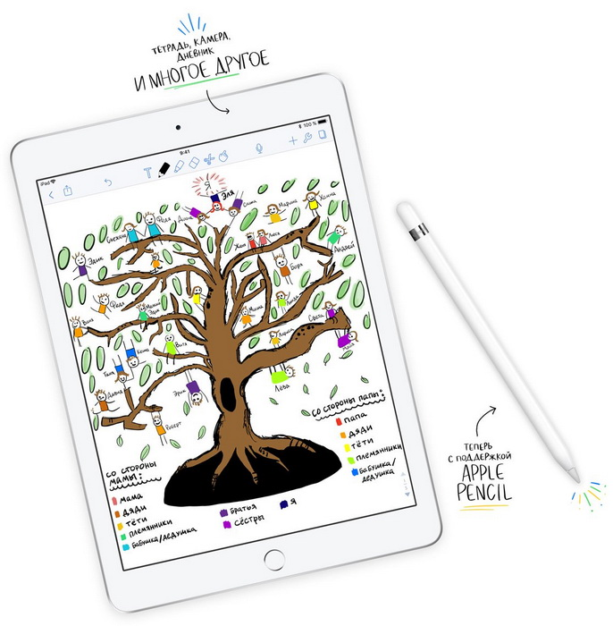 Apple iPad 9.7 (2018) с поддержкой Pencil-photo 4