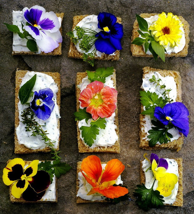 Бутерброды с цветами-фото