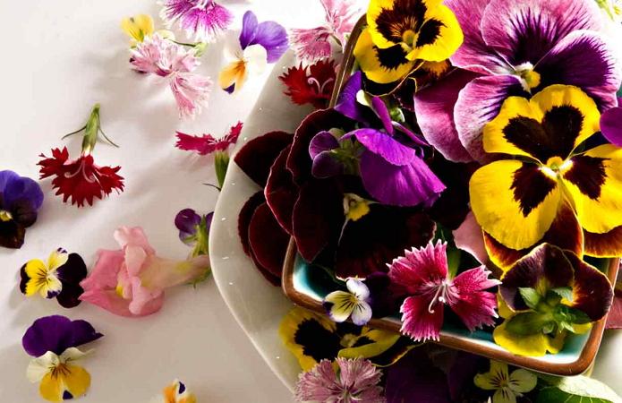 Съедобные цветы-для смузи-боул