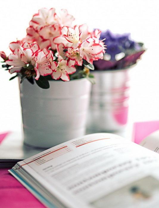 Весна в доме-цветы