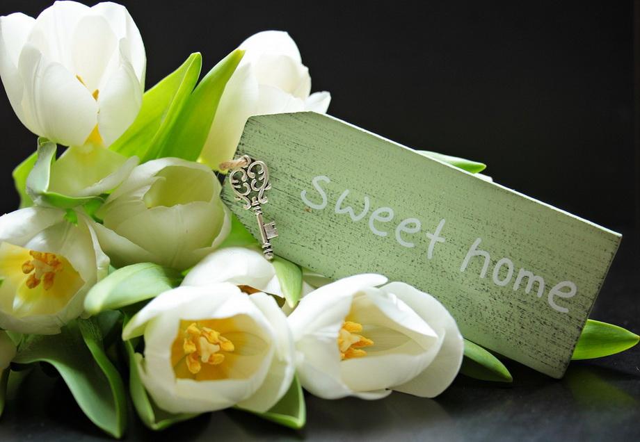 Весна в доме-цветы и уют