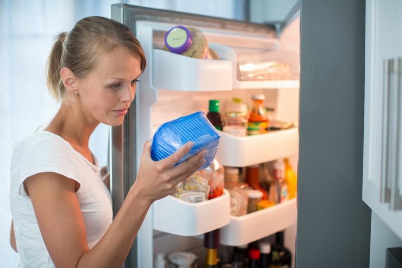 Ревизия холодильника-фото